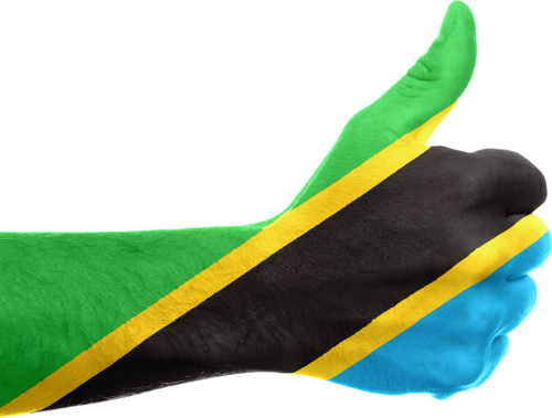 Tanzania-Green Up-Hapa Kazi Tu
