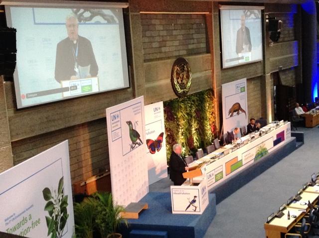 Holy See at UN Environment - 2017