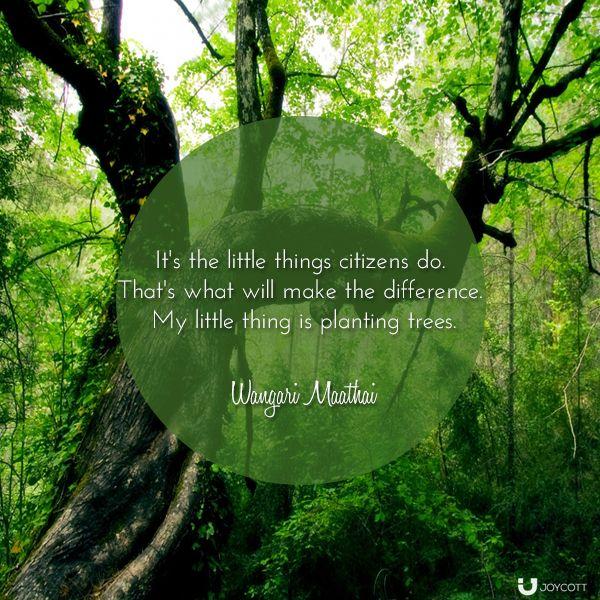 My Little Thing - Wangari Maathai